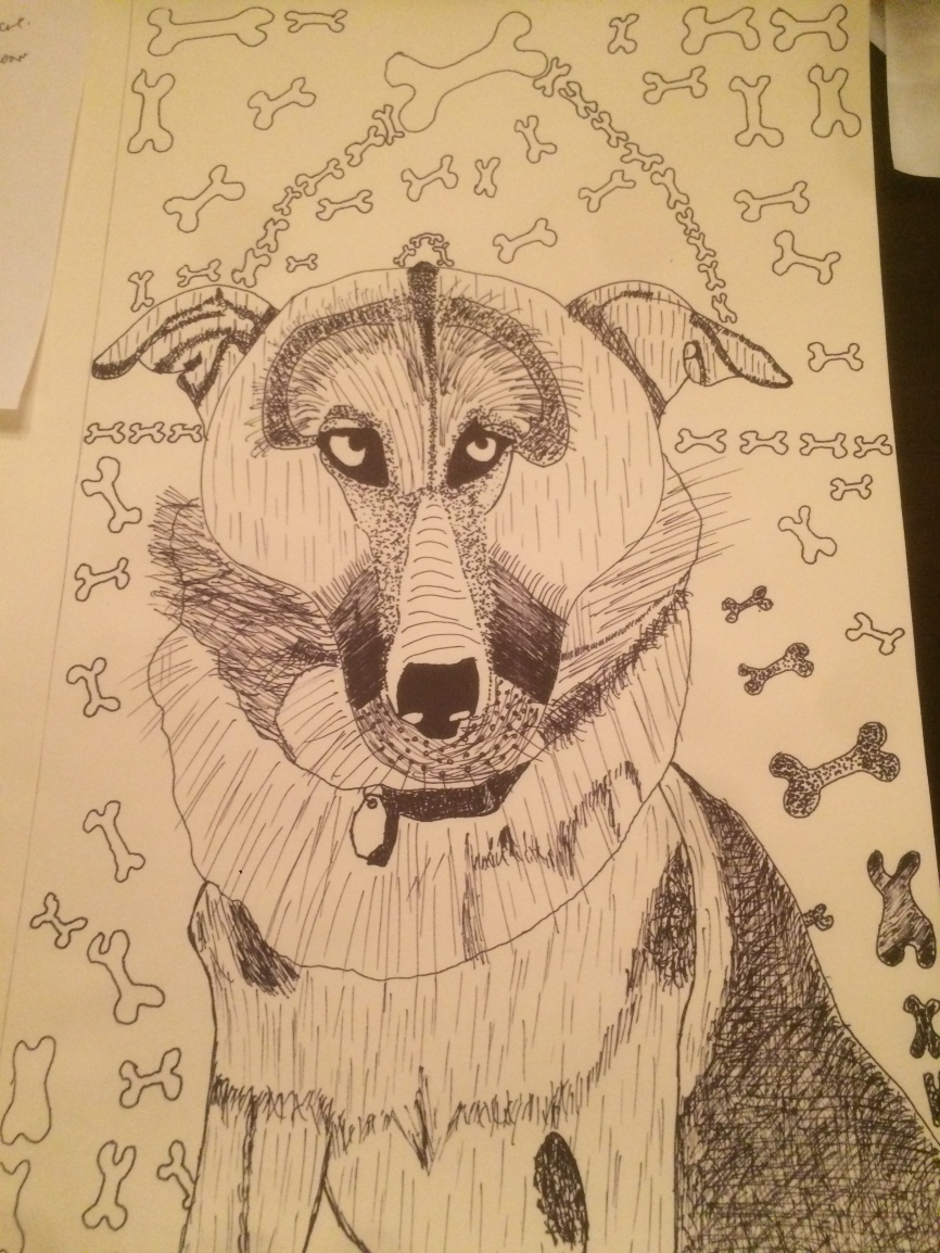 So here's an illustration that I completed of a german shepard from the front profile. It took over 3-4 hours to complete this but I was happy with the results. Contemporary art. Drawing. Illustrator Jamaal R. James Cartoonist Jamaal R. James