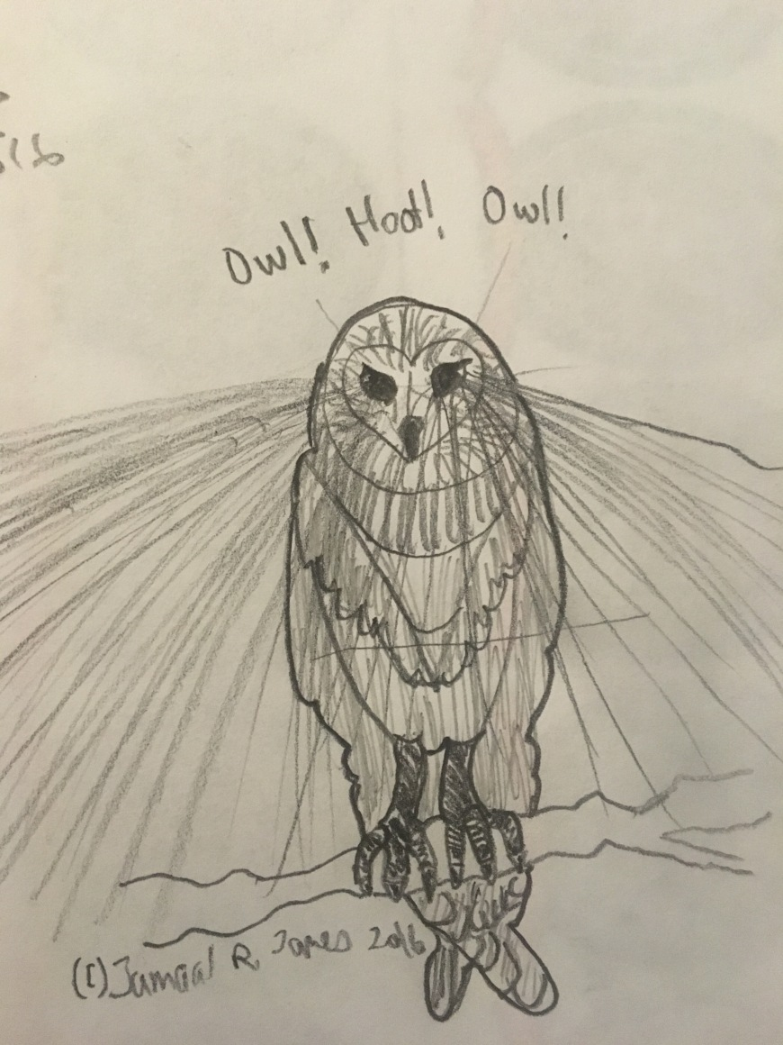 Owl Vision Drawing by Cartoonist Jamaal R. James for James Creative Arts And Entertainment Company, illustrator