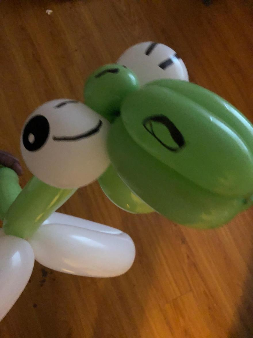 dragonfly-balloonart-jcaaec